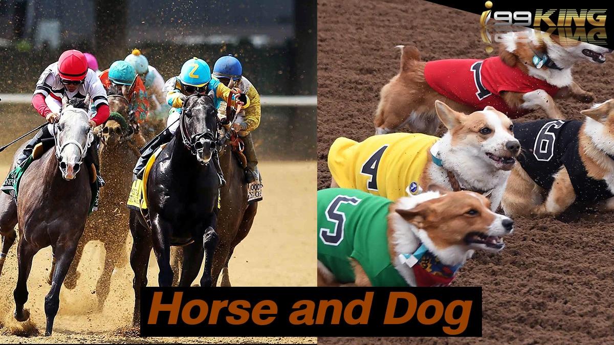 horse-dog-เว็บพนันออนไลน์