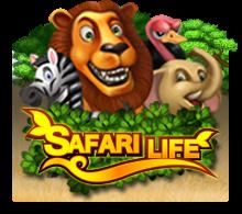 Safari Life SlotXo สล็อตออนไลน์